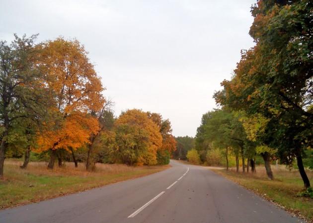 chernoe-belarus_05