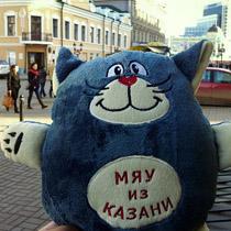 kot_kazanskiy_210
