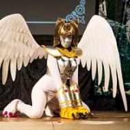 Фестиваль японской культуры «Феникс» и мультифандомный фестиваль «Парикара»