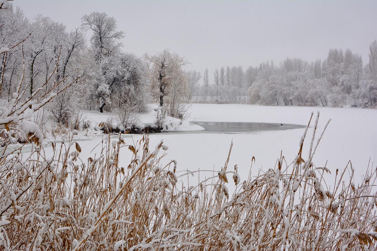 balakovo_prudy-zima_03