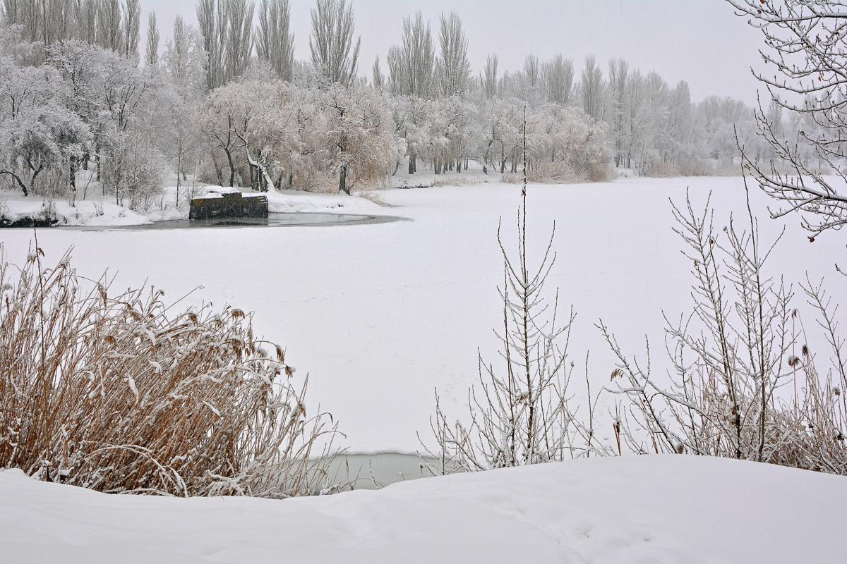 balakovo_prudy-zima_06