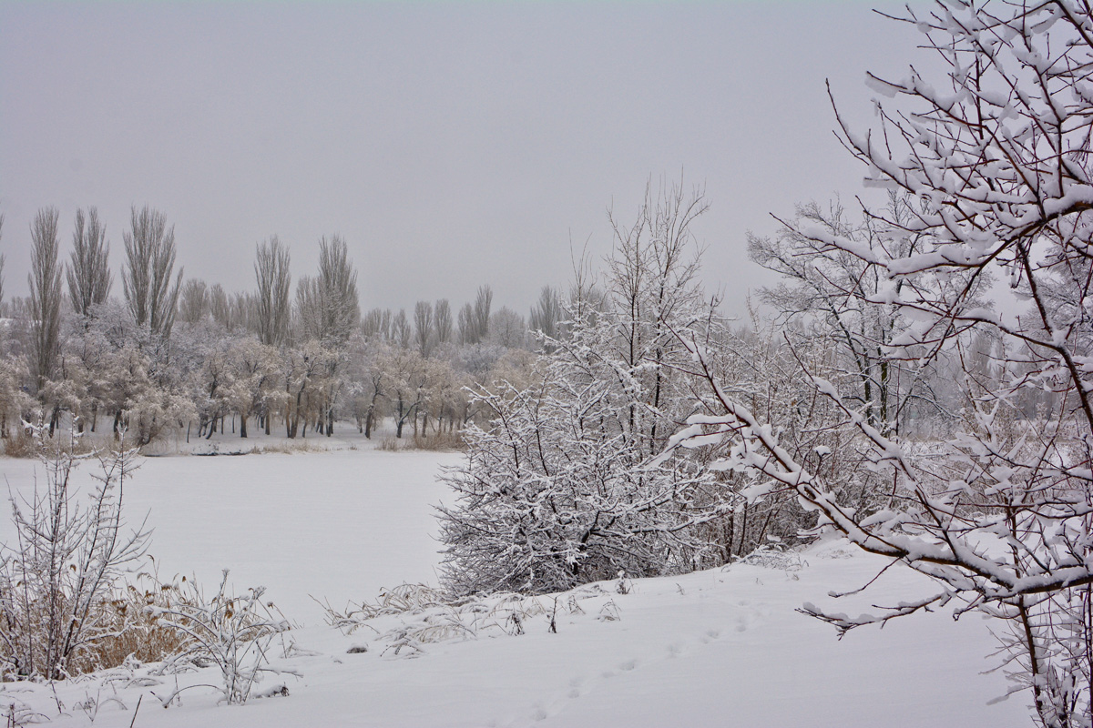 balakovo_prudy-zima_08