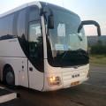 avtobusy_210