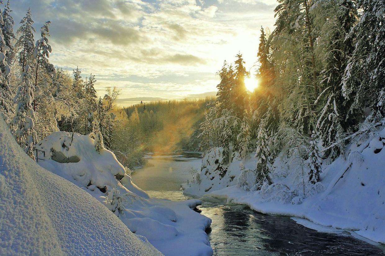 Зимняя природа Карелии