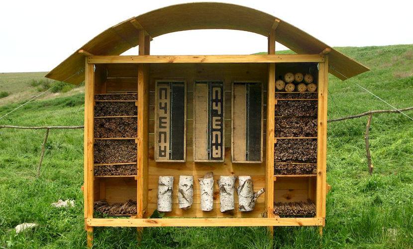 Мини-заказник «Гостиница для насекомых», Большой Кастель.