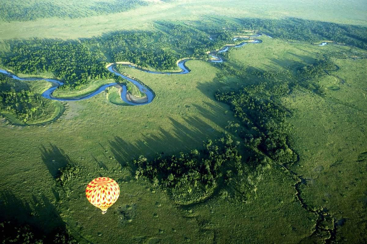 Жемчужина Кении - заповедник Масаи Мара